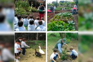 El Colegio San Tarsicio está comprometido con el medio ambiente