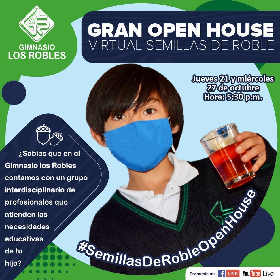 Open House Virtual Gimasio los robles